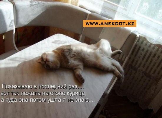 pre_1363719355__pokazyvayu-v-posledniyi-