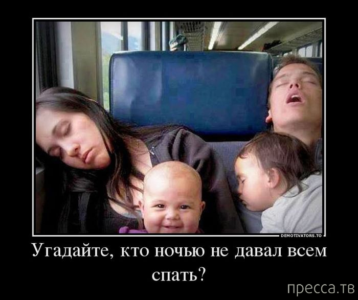 pre_1371785584__1371767942_ya13.jpg