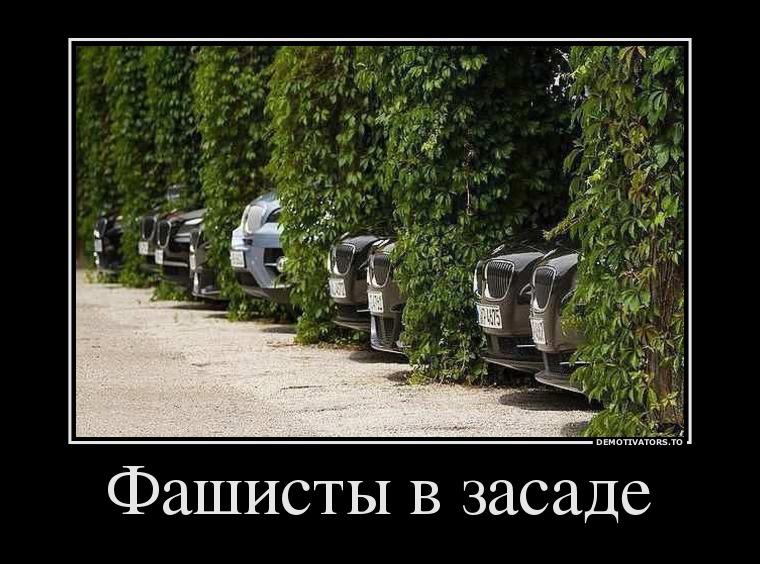 pre_1373055961__12536408_fashistyi-v-zas