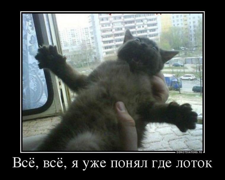 pre_1373056010__48737963_vsyo-vsyo-ya-uz