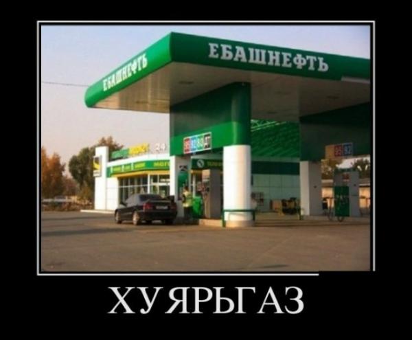 pre_1373480888__.jpg