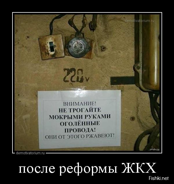 pre_1373481286__.jpg
