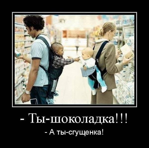 pre_1374177802__x1kbpqfipsm.jpg