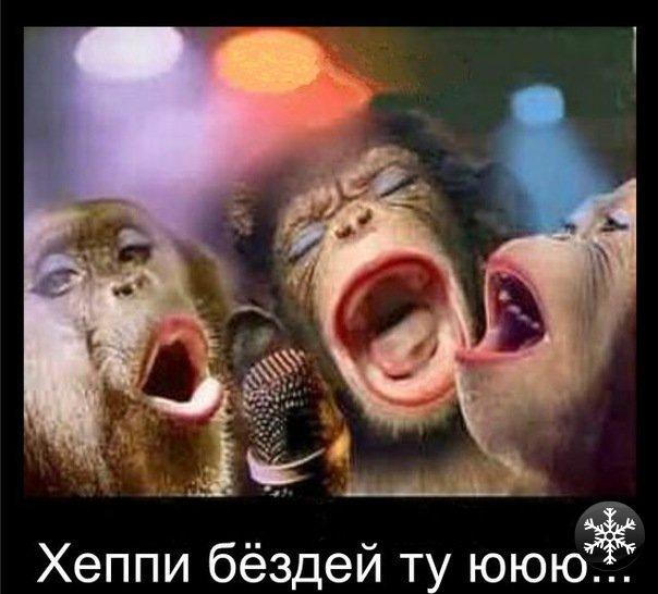 Открытки с днем рождения обезьянки
